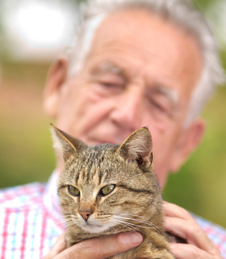 Older adult holding a cat